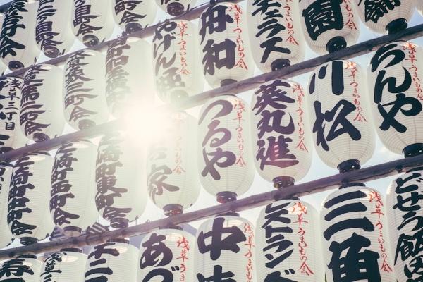 Qué son los paneles chinos